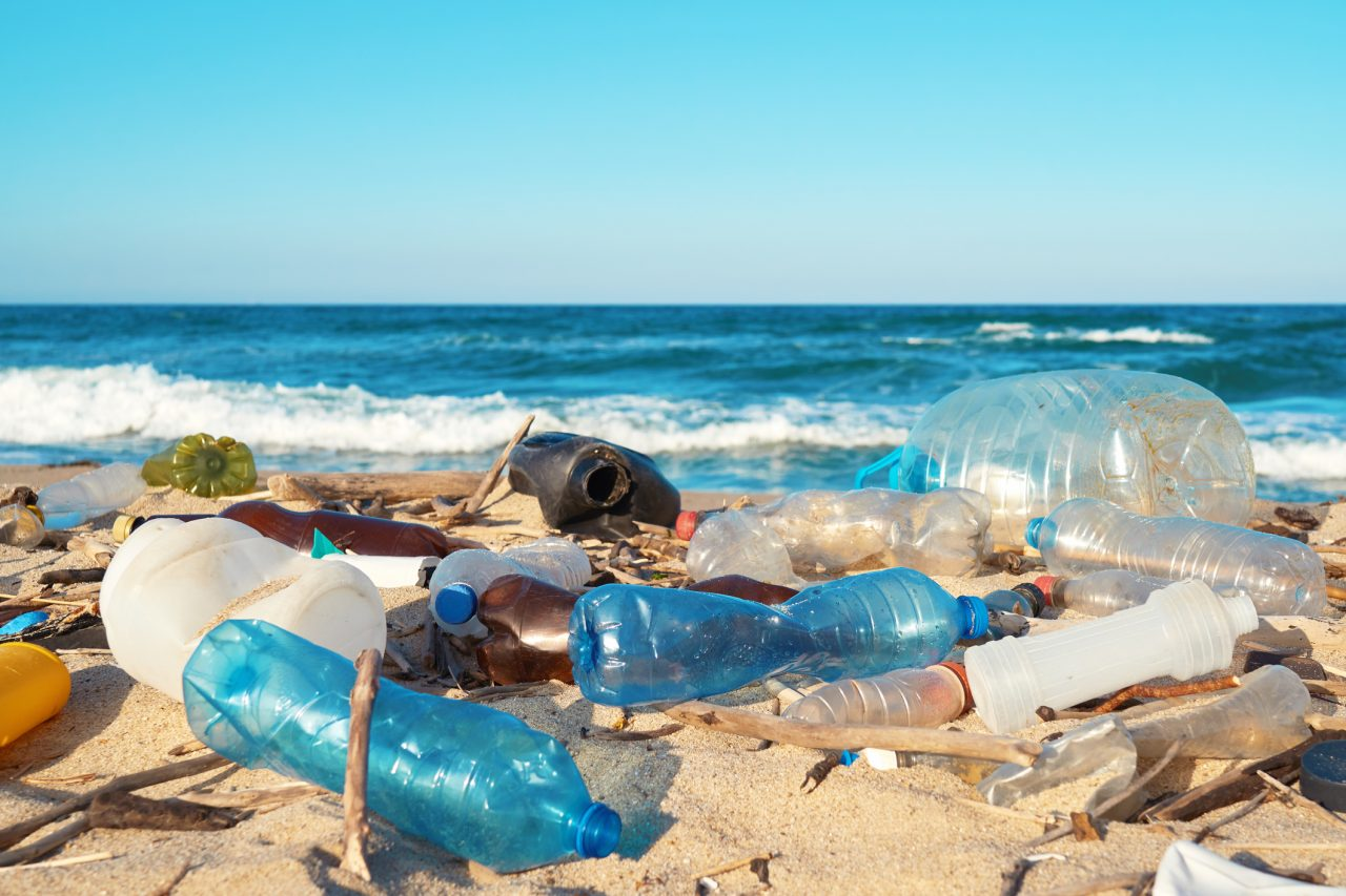 The-new-wave-of-plastic-hoping-to-wipe-out-pollution-1280x853.jpg
